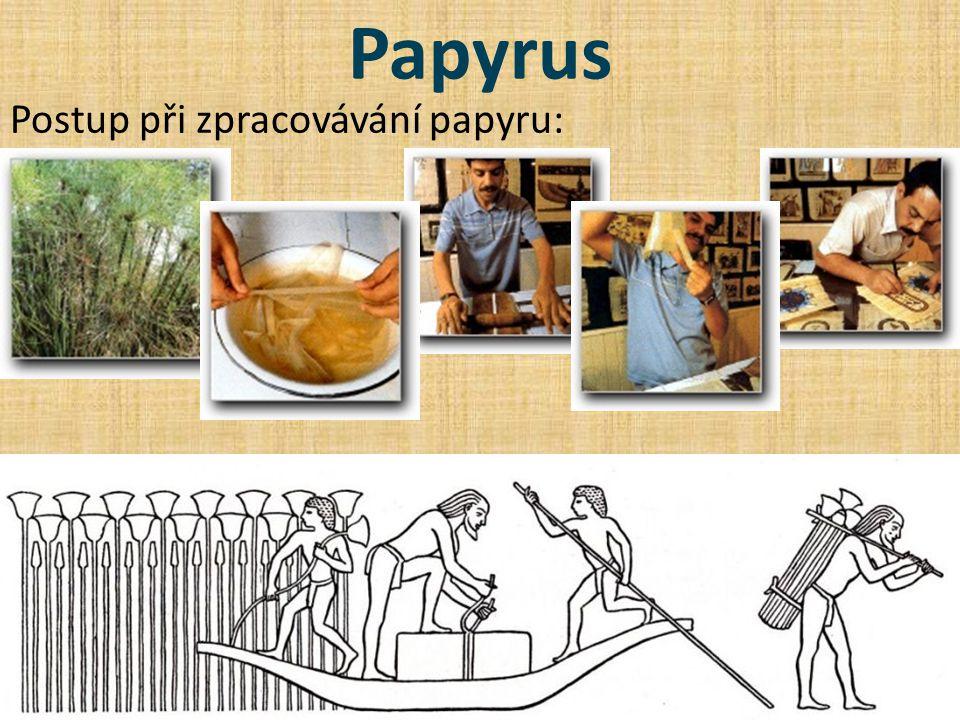 Papyrus Postup při zpracovávání papyru:
