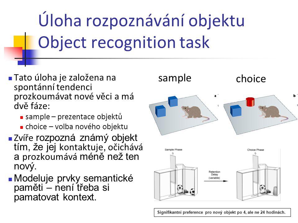 Úloha rozpoznávání objektu Object recognition task Tato úloha je založena na spontánní tendenci prozkoumávat nové věci a má dvě fáze: sample – prezent