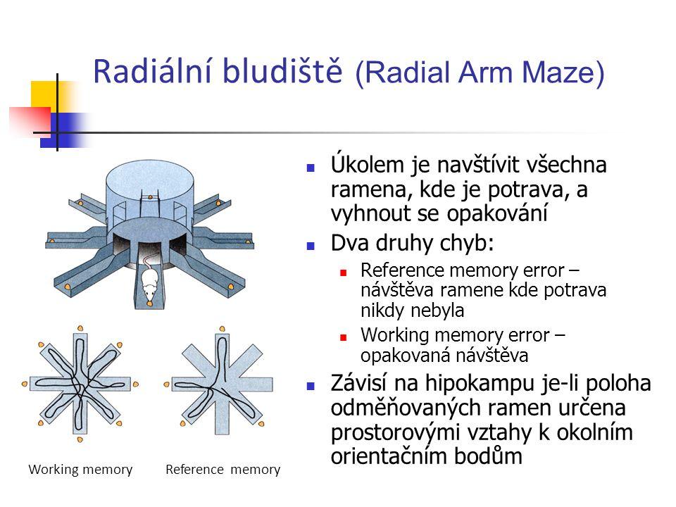Radiální bludiště (Radial Arm Maze) Úkolem je navštívit všechna ramena, kde je potrava, a vyhnout se opakování Dva druhy chyb: Reference memory error