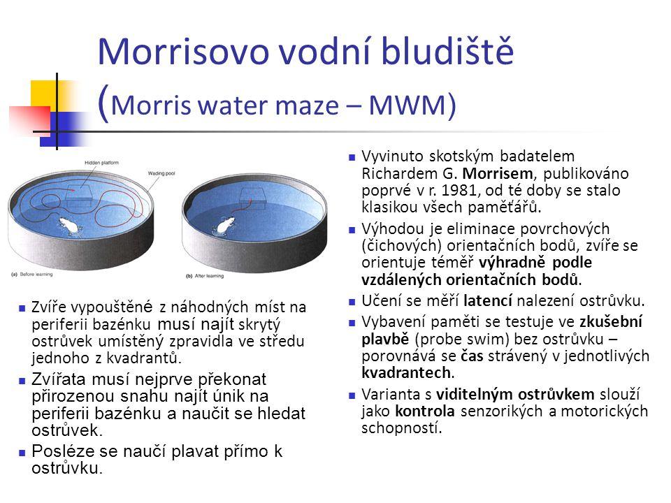 Morrisovo vodní bludiště ( Morris water maze – MWM ) Zvíře vypouštěn é z náhodných míst na periferii bazénku musí najít skrytý ostrůvek umístěn ý zpra