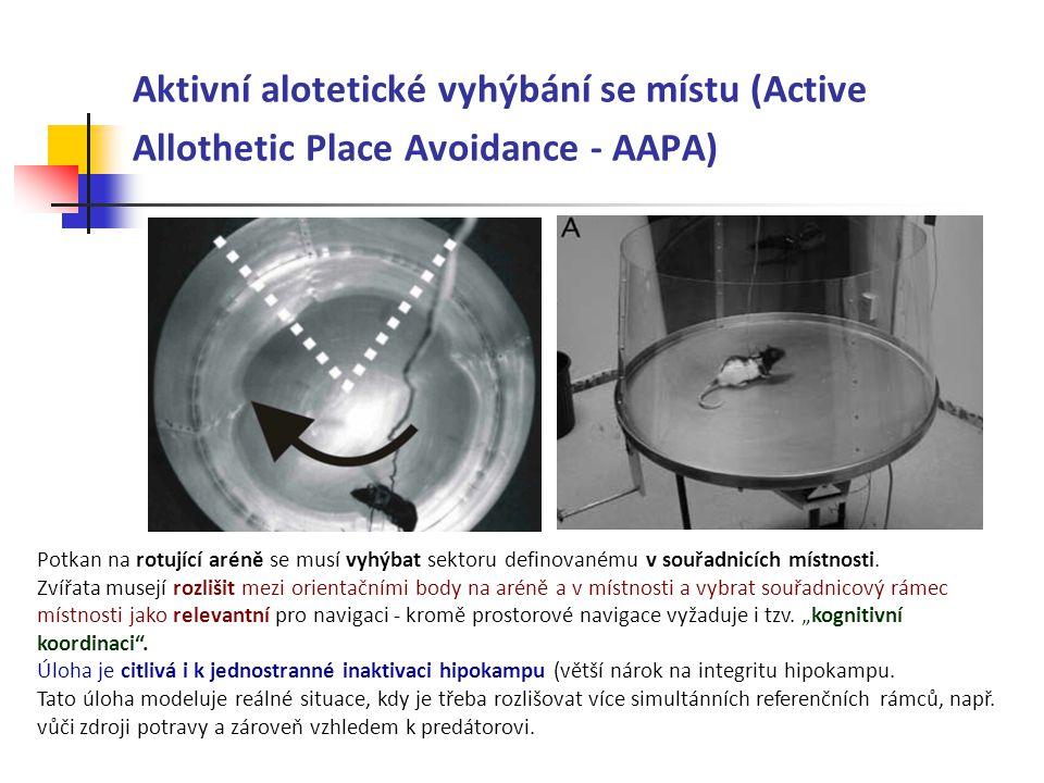 Aktivní alotetické vyhýbání se místu (Active Allothetic Place Avoidance - AAPA) Potkan na rotující aréně se musí vyhýbat sektoru definovanému v souřad
