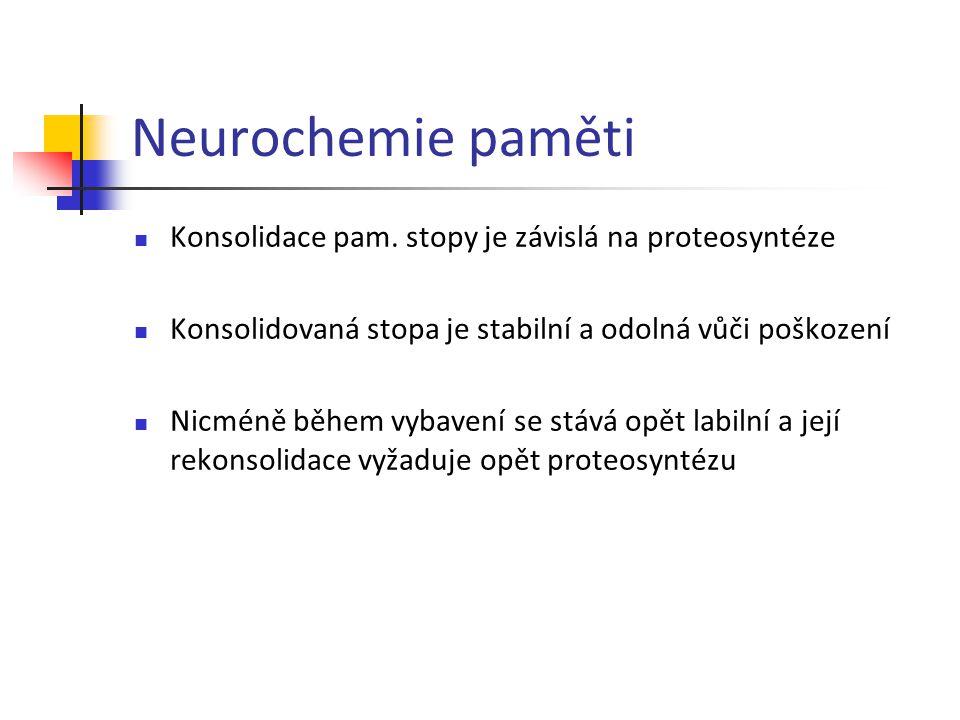 Neurochemie paměti Konsolidace pam. stopy je závislá na proteosyntéze Konsolidovaná stopa je stabilní a odolná vůči poškození Nicméně během vybavení s