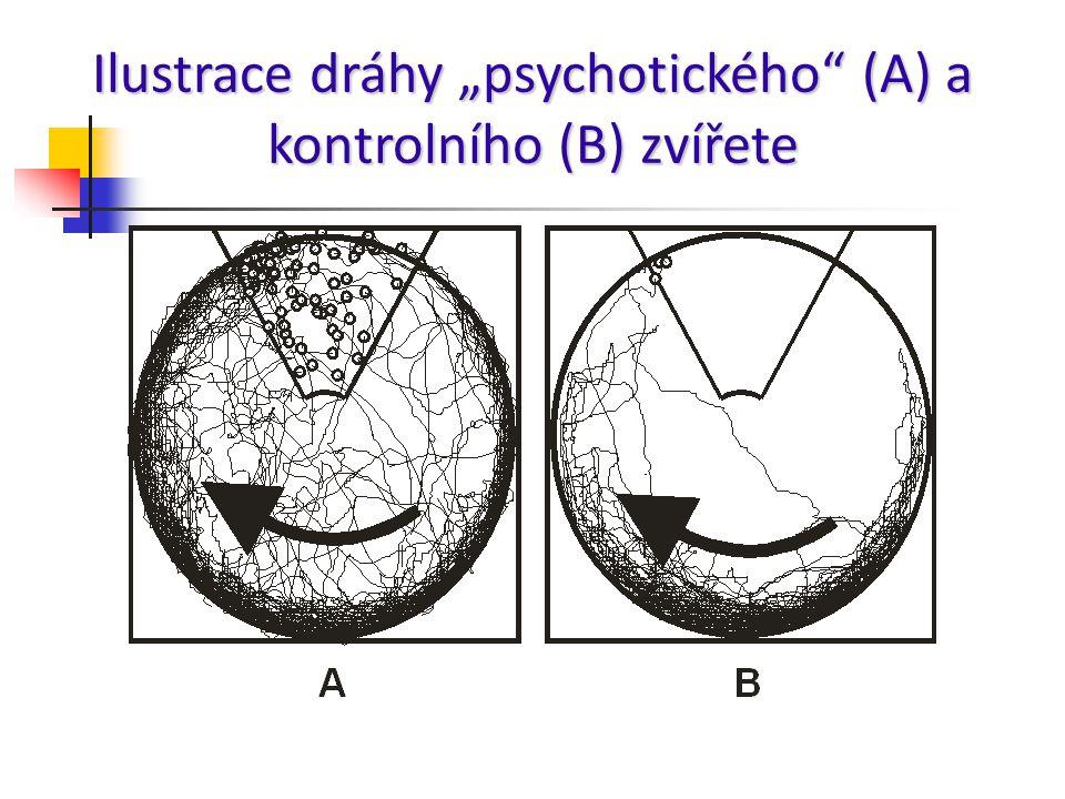 """Ilustrace dráhy """"psychotického"""" (A) a kontrolního (B) zvířete"""