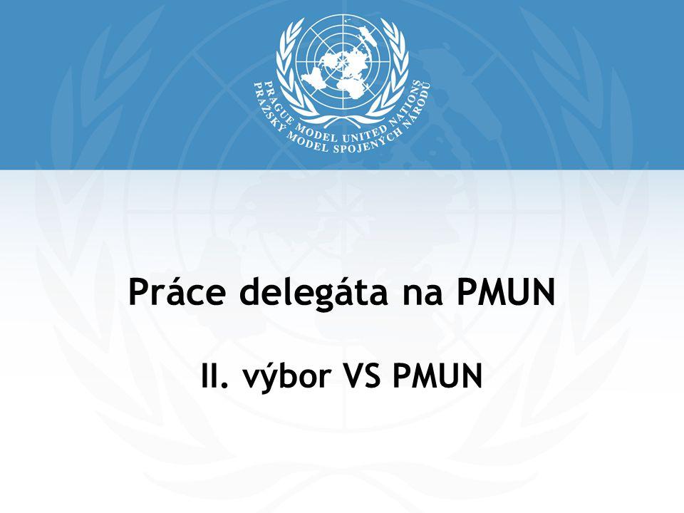 Práce delegáta na PMUN II. výbor VS PMUN