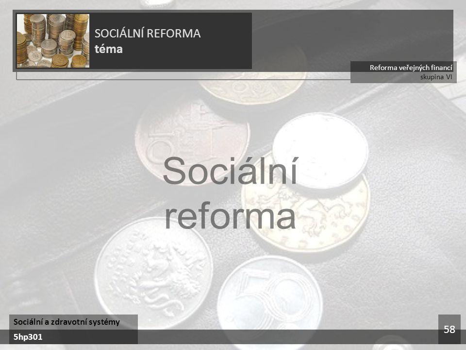 Reforma veřejných financí skupina VI SOCIÁLNÍ REFORMA téma Sociální a zdravotní systémy 5hp301 58