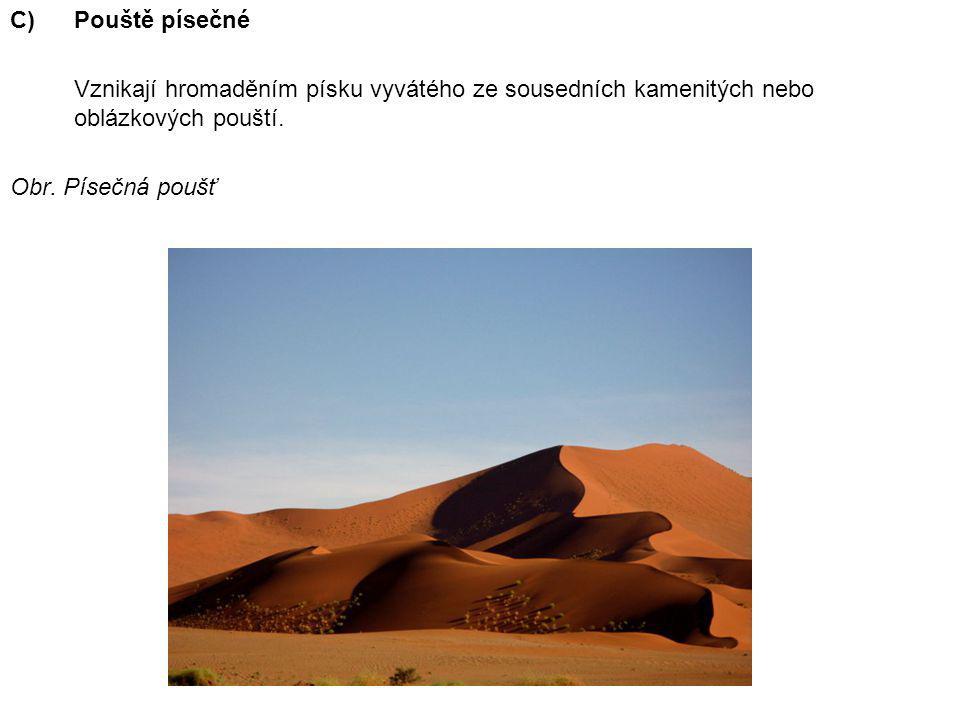 C)Pouště písečné Vznikají hromaděním písku vyvátého ze sousedních kamenitých nebo oblázkových pouští. Obr. Písečná poušť