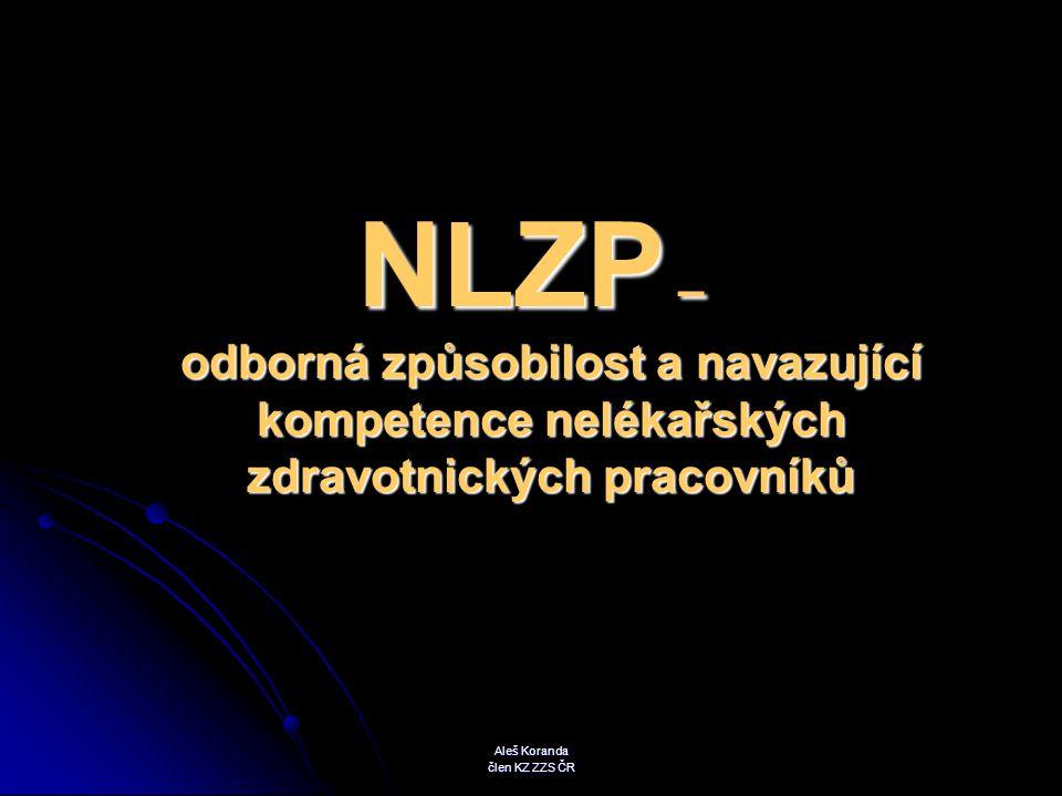 samostatná činnost NLZP v PNP : samostatná práce nelékařského zdravotnického pracovníka, tzv.