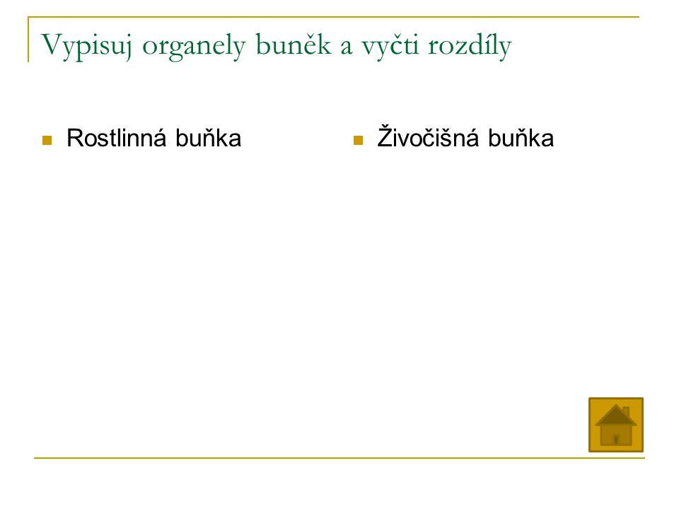 Vypisuj organely buněk a vyčti rozdíly Rostlinná buňka Živočišná buňka