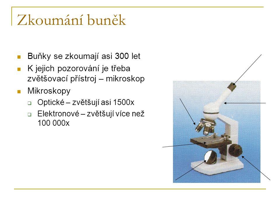 Zkoumání buněk Buňky se zkoumají asi 300 let K jejich pozorování je třeba zvětšovací přístroj – mikroskop Mikroskopy  Optické – zvětšují asi 1500x 