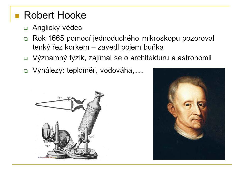 Robert Hooke  Anglický vědec  Rok 1665 pomocí jednoduchého mikroskopu pozoroval tenký řez korkem – zavedl pojem buňka  Významný fyzik, zajímal se o
