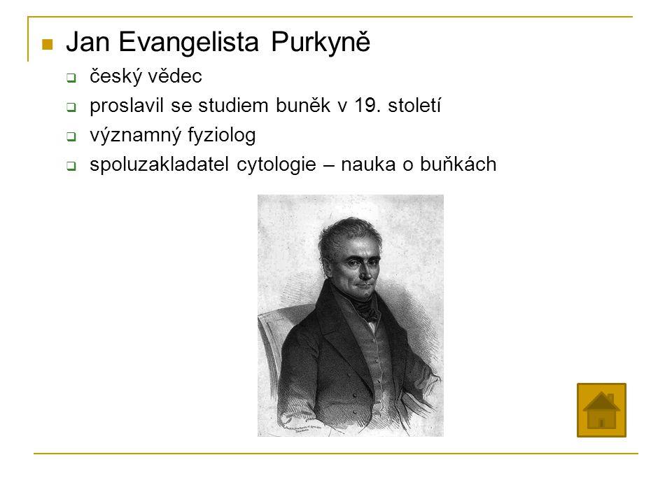 Jan Evangelista Purkyně  český vědec  proslavil se studiem buněk v 19. století  významný fyziolog  spoluzakladatel cytologie – nauka o buňkách