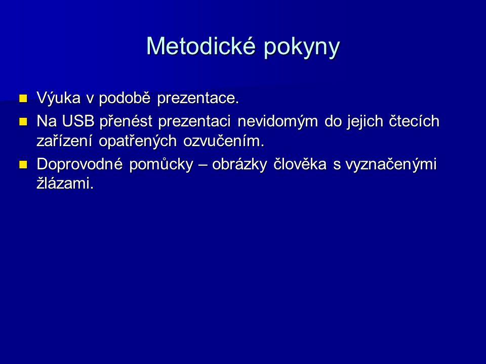 Metodické pokyny Výuka v podobě prezentace. Výuka v podobě prezentace.
