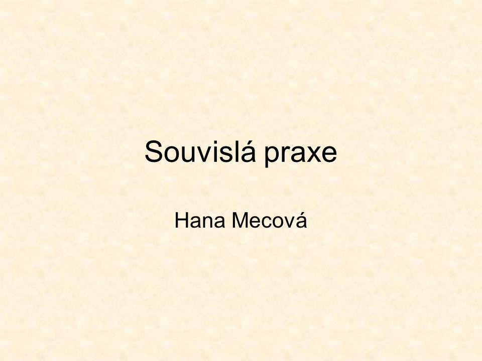 Souvislá praxe Hana Mecová