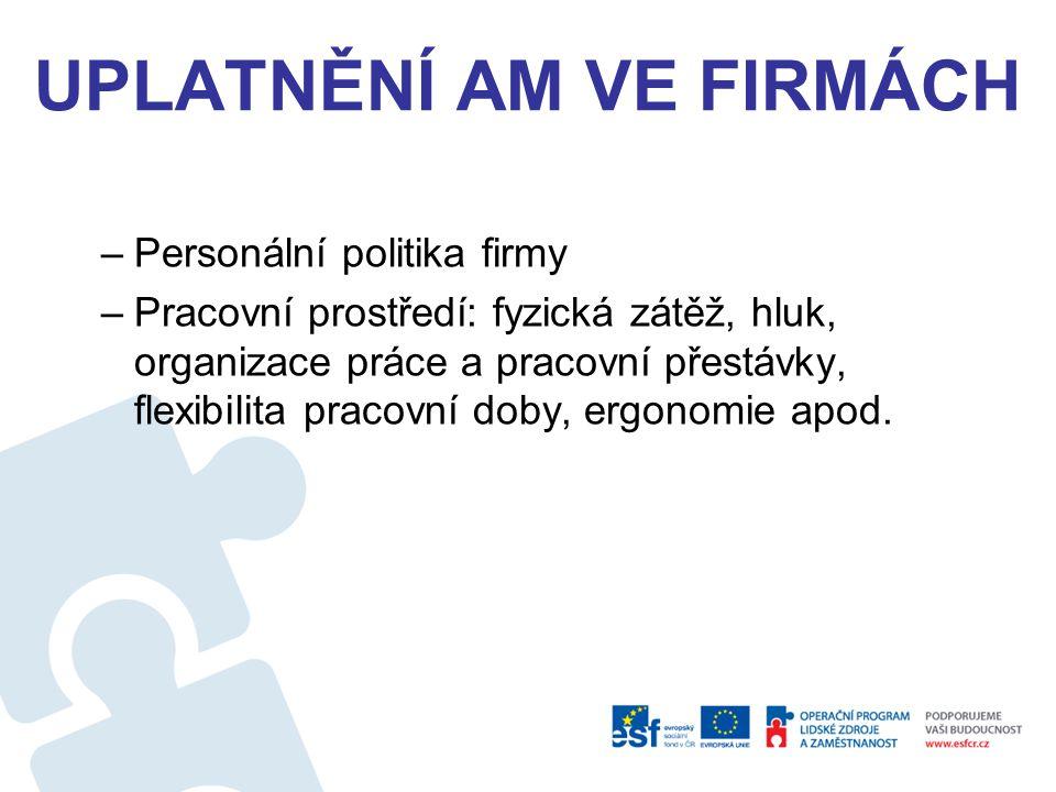 UPLATNĚNÍ AM VE FIRMÁCH –Personální politika firmy –Pracovní prostředí: fyzická zátěž, hluk, organizace práce a pracovní přestávky, flexibilita pracovní doby, ergonomie apod.