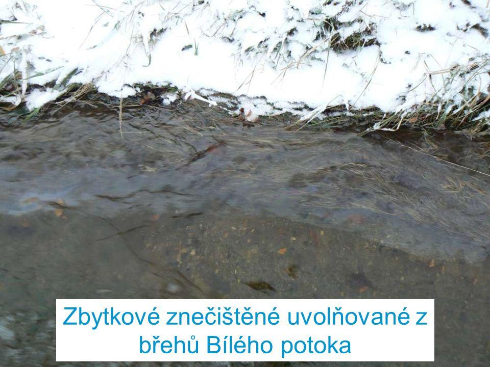 Zbytkové znečištěné uvolňované z břehů Bílého potoka
