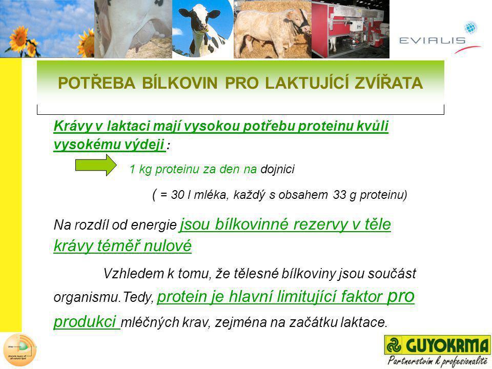 Krávy v laktaci mají vysokou potřebu proteinu kvůli vysokému výdeji : 1 kg proteinu za den na dojnici ( = 30 l mléka, každý s obsahem 33 g proteinu) N