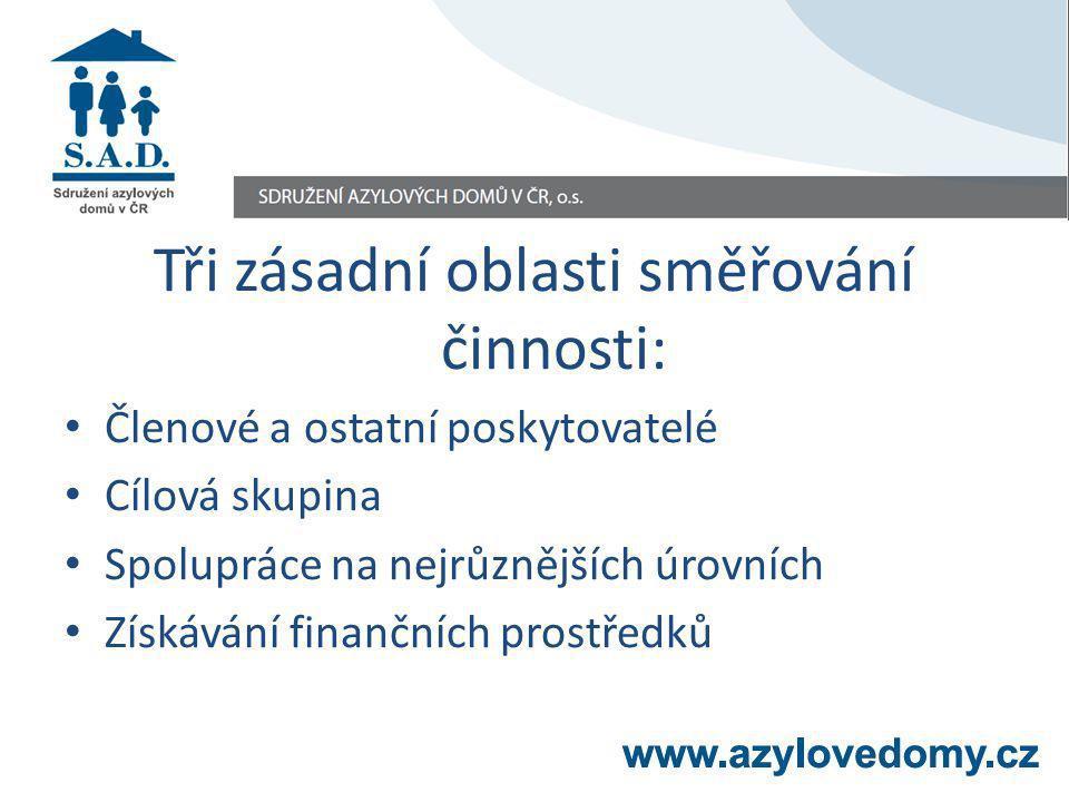 Tři zásadní oblasti směřování činnosti: Členové a ostatní poskytovatelé Cílová skupina Spolupráce na nejrůznějších úrovních Získávání finančních prost
