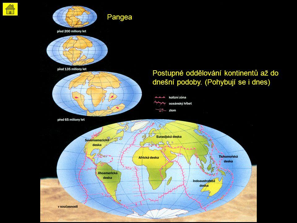 Pangea Postupné oddělování kontinentů až do dnešní podoby. (Pohybují se i dnes)