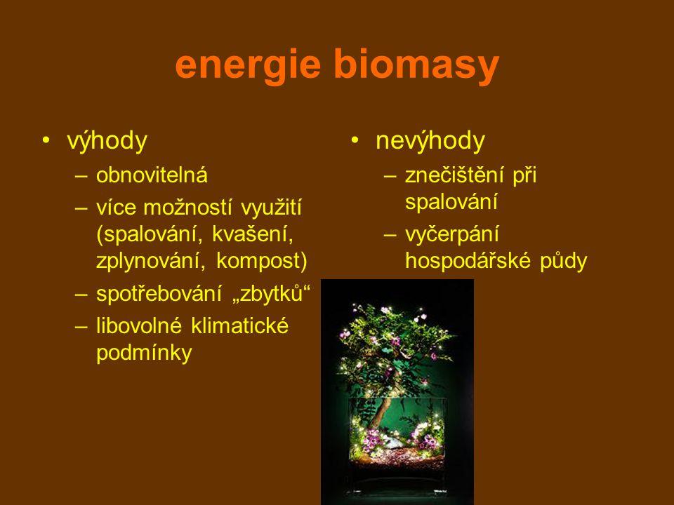 """energie biomasy výhody –obnovitelná –více možností využití (spalování, kvašení, zplynování, kompost) –spotřebování """"zbytků –libovolné klimatické podmínky nevýhody –znečištění při spalování –vyčerpání hospodářské půdy"""