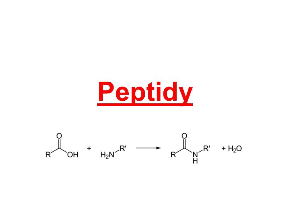 rozdělení: oligopeptidy – 2 – 10 AMK (dipeptidy, tripeptidy, ……) polypeptidy – do 100 AMK bílkoviny – nad 100 AMK