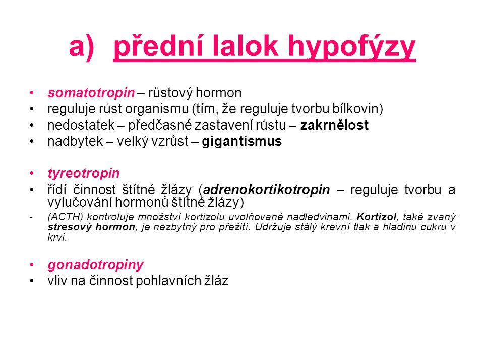 b)zadní lalok hypofýzy vasopresin reguluje obsah vody v těle vliv na stahování, zužování cév nadbytek – zvýšení krevního tlaku oxytocin stahování hladkého svalstva ženských pohlavních orgánů (dělohy) – regulace porodu