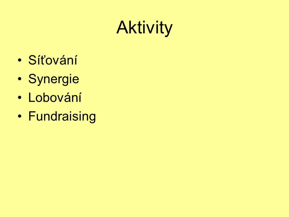 Síťování, synergie Synergický princip: využívání potenciálů společných cílů a stanovisek.