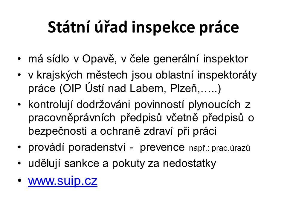 Státní úřad inspekce práce má sídlo v Opavě, v čele generální inspektor v krajských městech jsou oblastní inspektoráty práce (OIP Ústí nad Labem, Plze