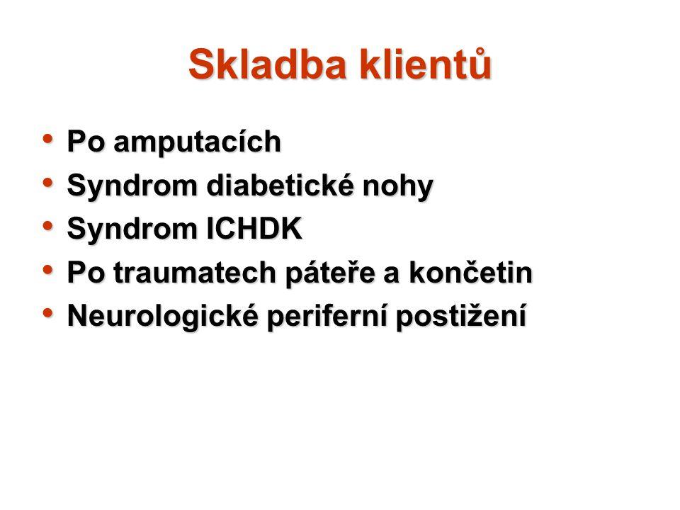 Skladba klientů Po amputacích Po amputacích Syndrom diabetické nohy Syndrom diabetické nohy Syndrom ICHDK Syndrom ICHDK Po traumatech páteře a končeti