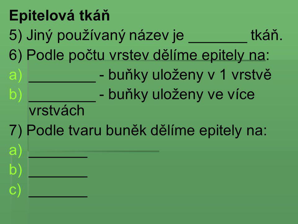 Epitelová tkáň 5) Jiný používaný název je _______ tkáň. 6) Podle počtu vrstev dělíme epitely na: a) a)________ - buňky uloženy v 1 vrstvě b) b)_______
