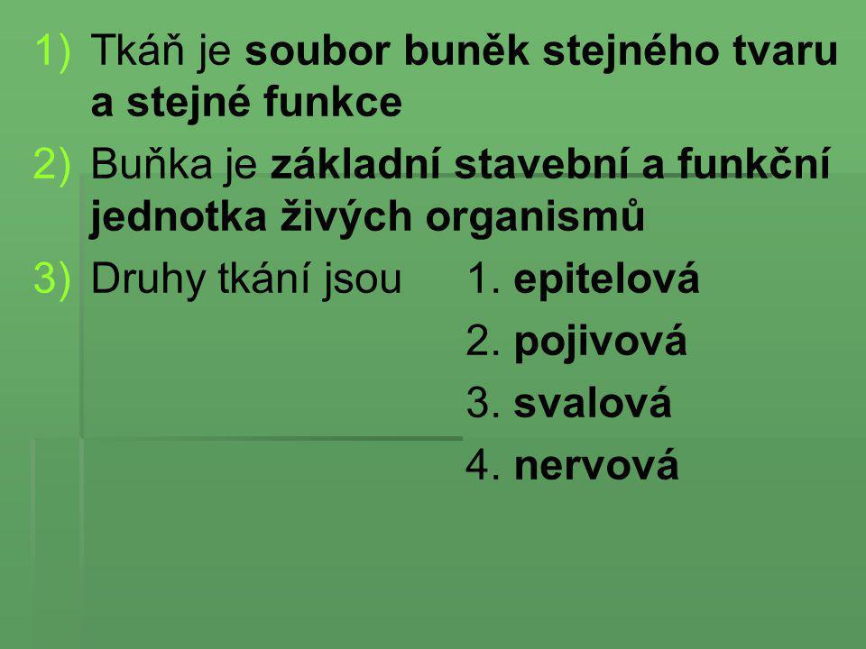 1) 1)Tkáň je soubor buněk stejného tvaru a stejné funkce 2) 2)Buňka je základní stavební a funkční jednotka živých organismů 3) 3)Druhy tkání jsou 1.