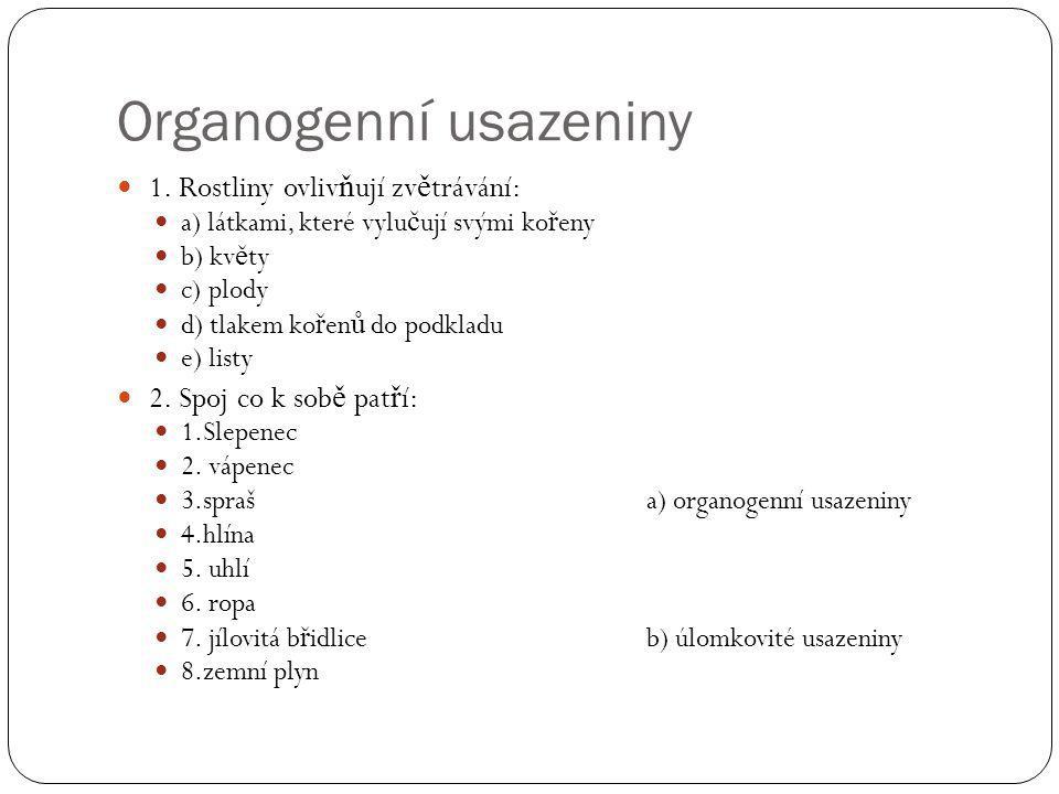 Organogenní usazeniny 1.