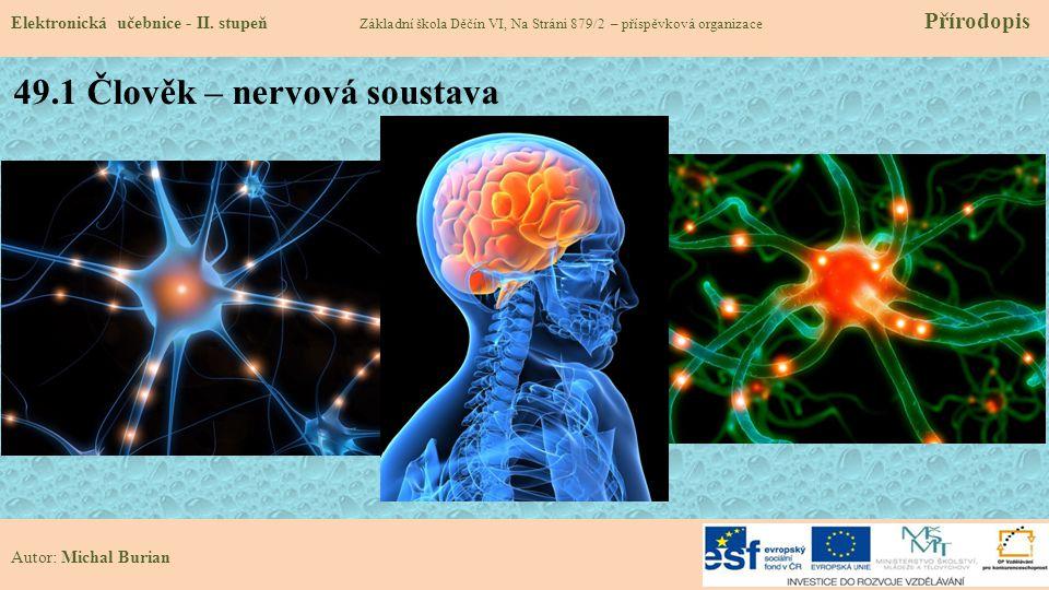 49.1 Člověk – nervová soustava Elektronická učebnice - II. stupeň Základní škola Děčín VI, Na Stráni 879/2 – příspěvková organizace Přírodopis Autor: