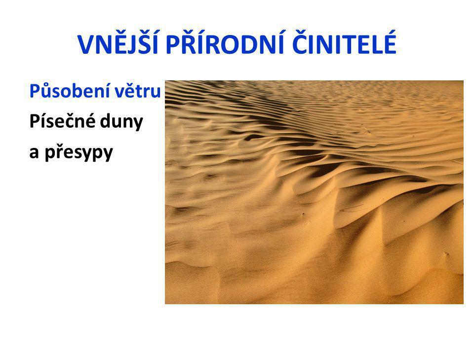VNĚJŠÍ PŘÍRODNÍ ČINITELÉ Působení větru Písečné duny a přesypy