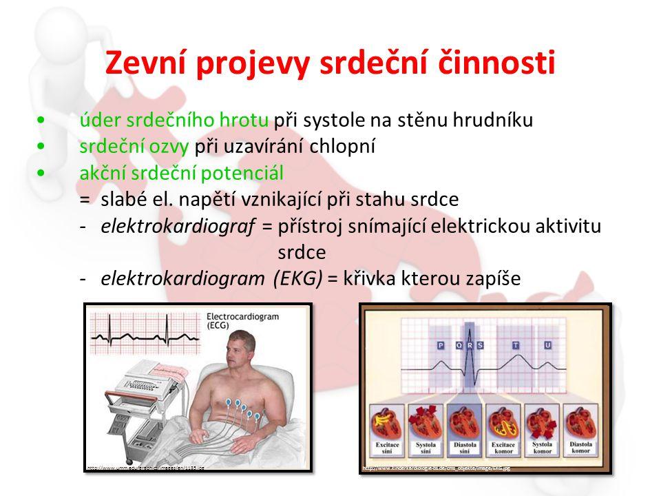 Zevní projevy srdeční činnosti úder srdečního hrotu při systole na stěnu hrudníku srdeční ozvy při uzavírání chlopní akční srdeční potenciál = slabé el.