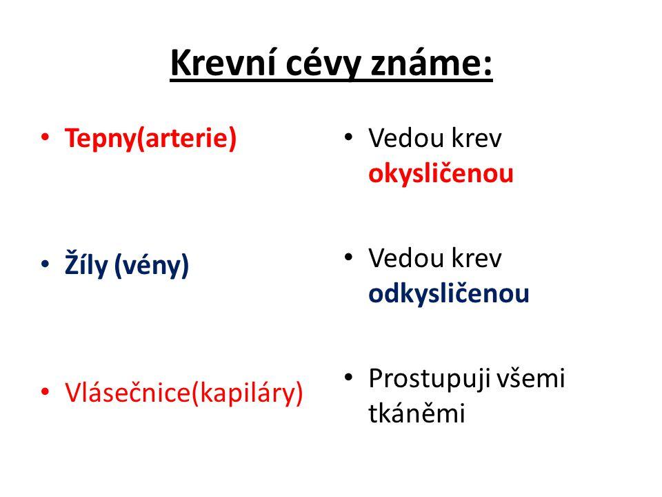 Krevní cévy známe: Tepny(arterie) Žíly (vény) Vlásečnice(kapiláry) Vedou krev okysličenou Vedou krev odkysličenou Prostupuji všemi tkáněmi