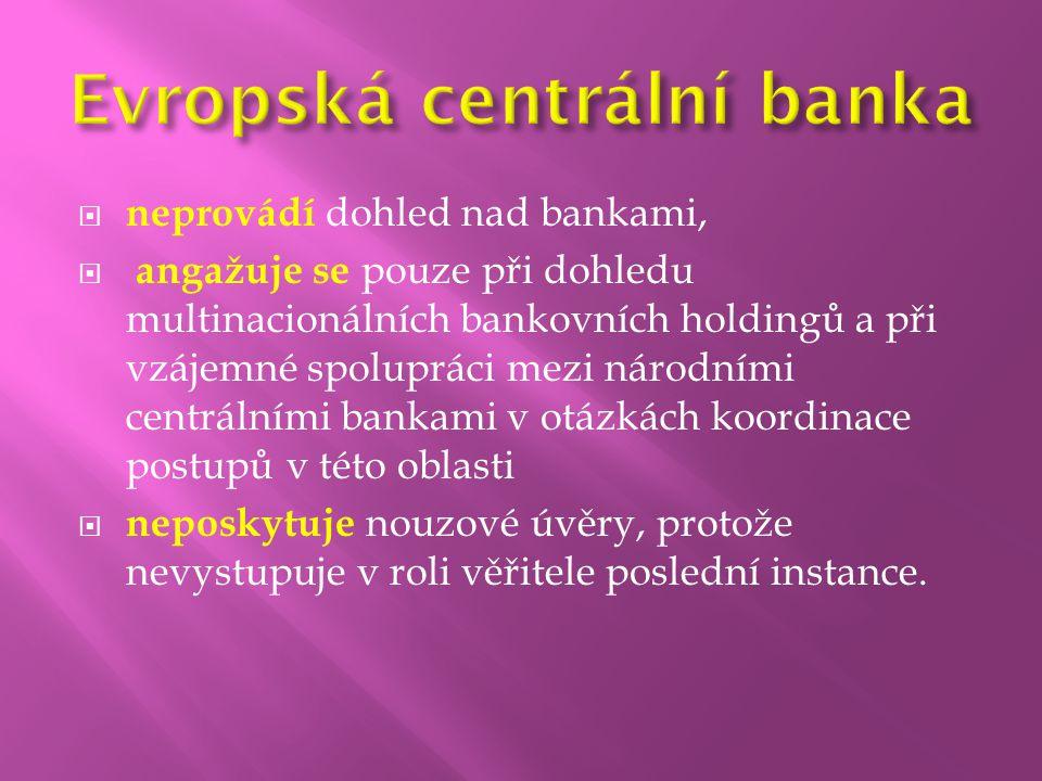  neprovádí dohled nad bankami,  angažuje se pouze při dohledu multinacionálních bankovních holdingů a při vzájemné spolupráci mezi národními centrál