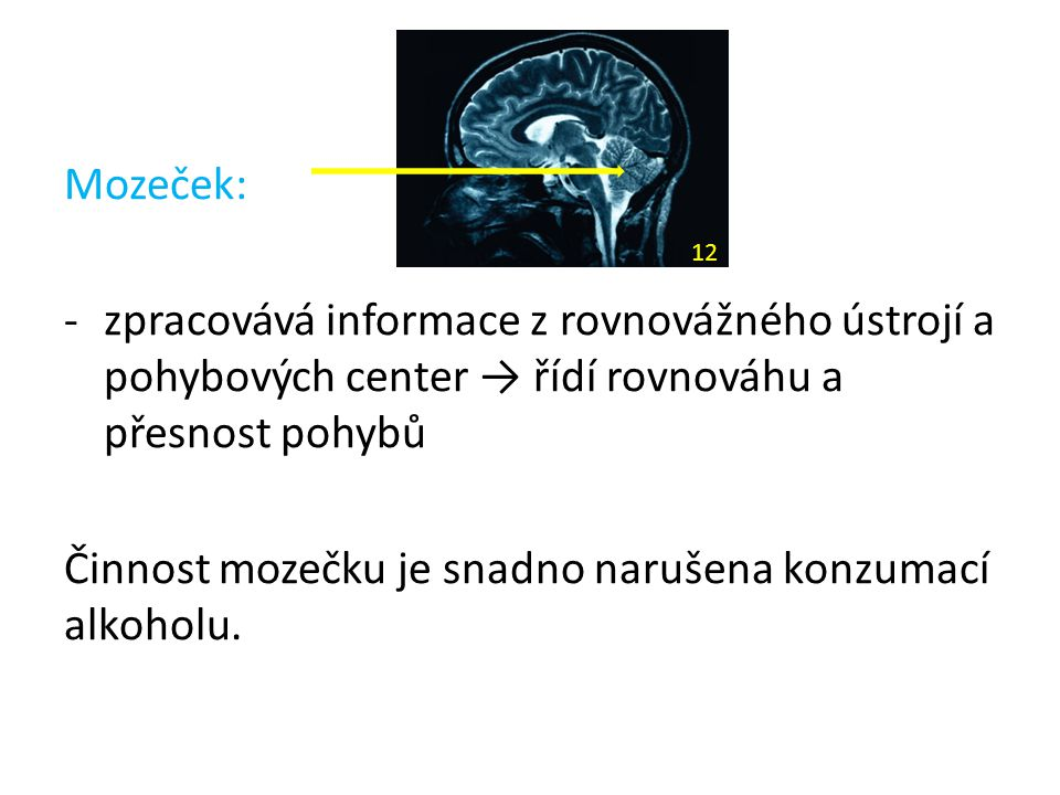 Mozeček: -zpracovává informace z rovnovážného ústrojí a pohybových center → řídí rovnováhu a přesnost pohybů Činnost mozečku je snadno narušena konzum