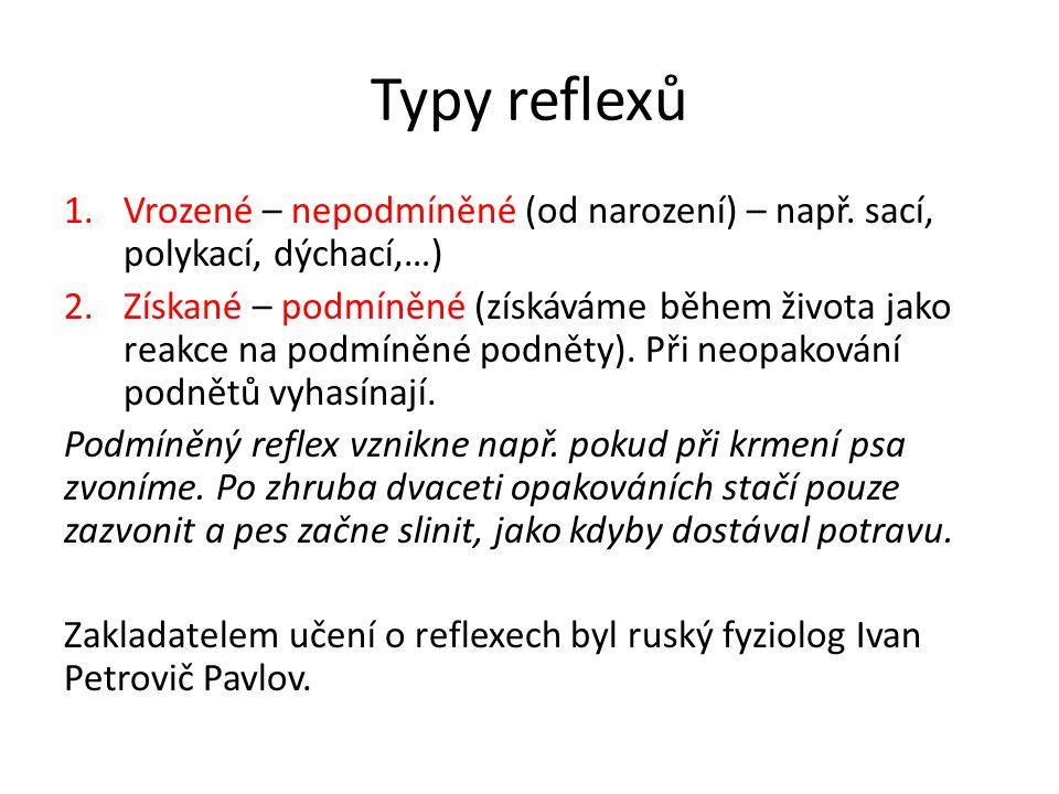 Typy reflexů 1.Vrozené – nepodmíněné (od narození) – např. sací, polykací, dýchací,…) 2.Získané – podmíněné (získáváme během života jako reakce na pod