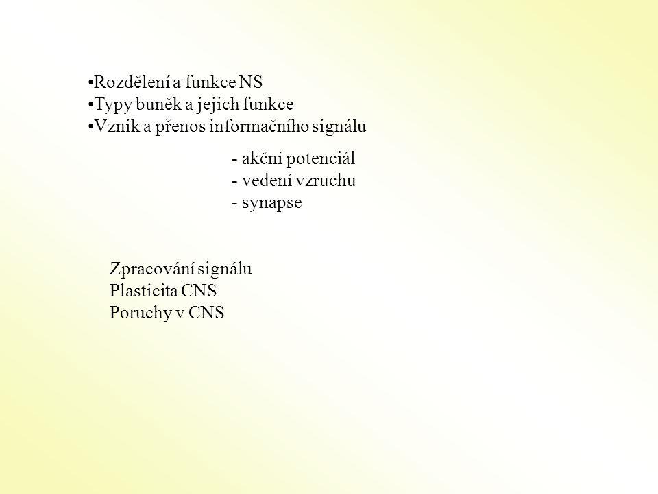 Vedení vzruchu Nemyelizovaná vlákna -pomalé vedení signílu -v NS asi 40% axonů Myelizovaná (izolovaná) vlákna - saltatorní vedení (Ranvierovy zážezy), rychlé vedení Rychlost vedení el.