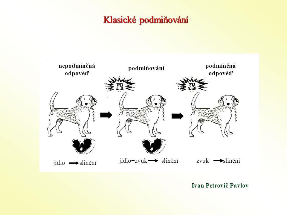 Ivan Petrovič Pavlov Klasické podmiňování nepodmíněná odpověď podmiňování podmíněná odpověď jídlo slinění jídlo+zvuk slinění zvuk slinění