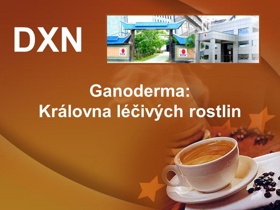 Ganoderma: Královna léčivých rostlin DXN
