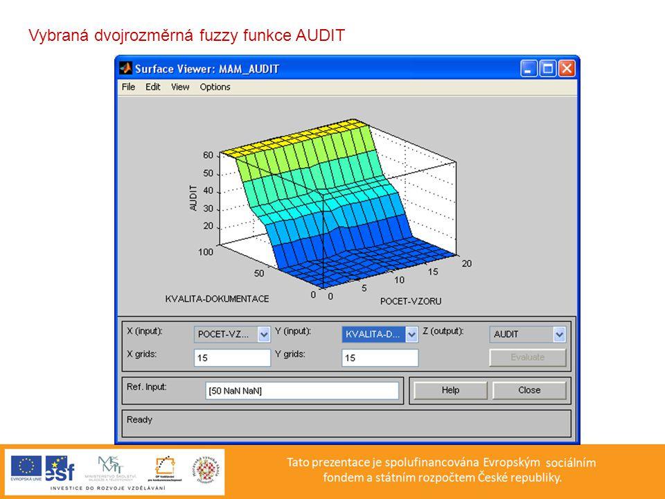 Vybraná dvojrozměrná fuzzy funkce AUDIT