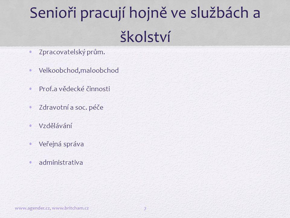 Příklady z praxe www.agender.cz, www.britcham.cz8