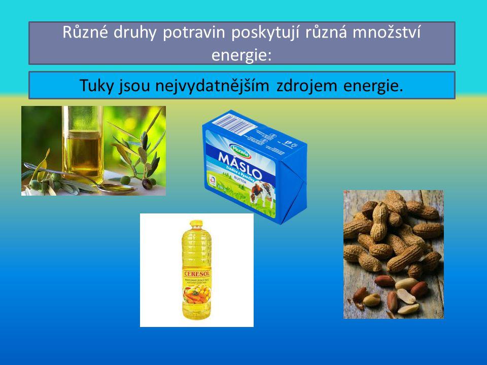 Různé druhy potravin poskytují různá množství energie: Tuky jsou nejvydatnějším zdrojem energie.
