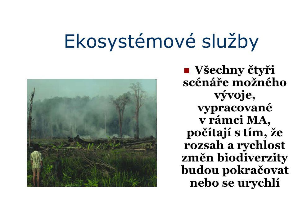 Ekosystémové služby Všechny čtyři scénáře možného vývoje, vypracované v rámci MA, počítají s tím, že rozsah a rychlost změn biodiverzity budou pokračovat nebo se urychlí