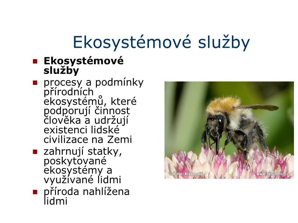 Ekosystémové služby