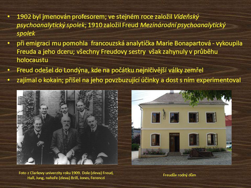 1902 byl jmenován profesorem; ve stejném roce založil Vídeňský psychoanalytický spolek; 1910 založil Freud Mezinárodní psychoanalytický spolek při emigraci mu pomohla francouzská analytička Marie Bonapartová - vykoupila Freuda a jeho dceru; všechny Freudovy sestry však zahynuly v průběhu holocaustu Freud odešel do Londýna, kde na počátku nejničivější války zemřel zajímal o kokain; přišel na jeho povzbuzující účinky a dost s ním experimentoval Foto z Clarkovy univerzity roku 1909.
