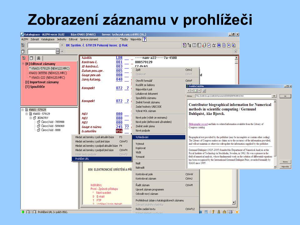 Zobrazení záznamu v prohlížeči
