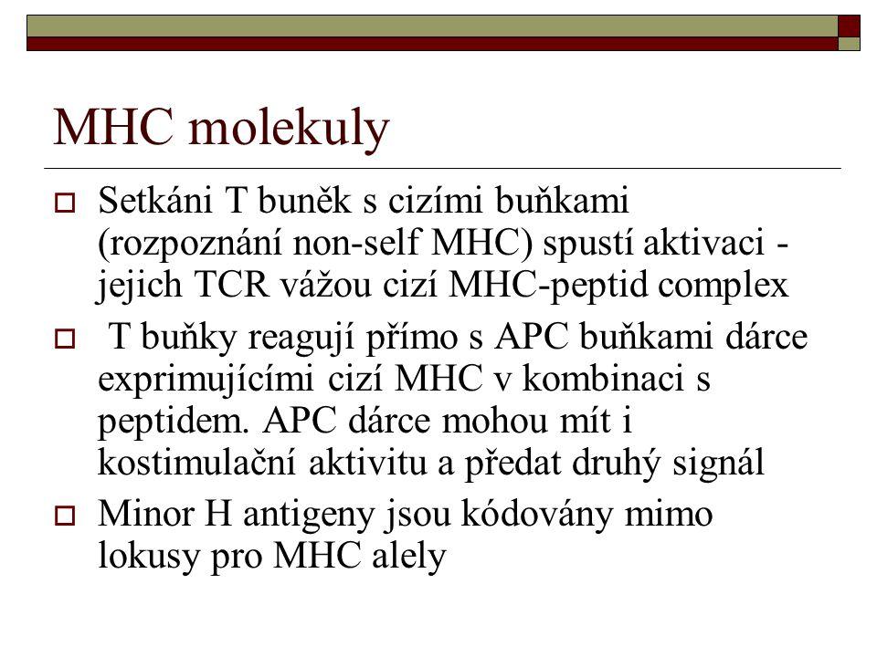 MHC molekuly  Setkáni T buněk s cizími buňkami (rozpoznání non-self MHC) spustí aktivaci - jejich TCR vážou cizí MHC-peptid complex  T buňky reagují přímo s APC buňkami dárce exprimujícími cizí MHC v kombinaci s peptidem.