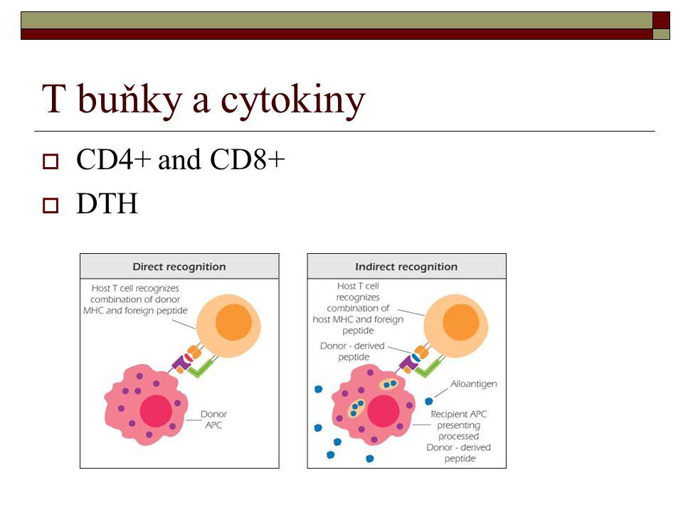 T buňky a cytokiny  CD4+ and CD8+  DTH